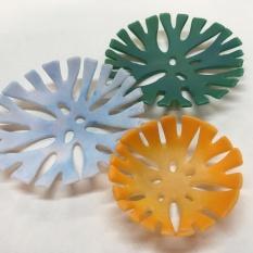 Small corallite disks