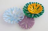 "Small 3-5"" corallite disks"