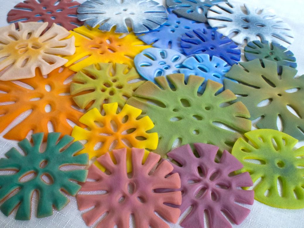 Colorful corallite pieces